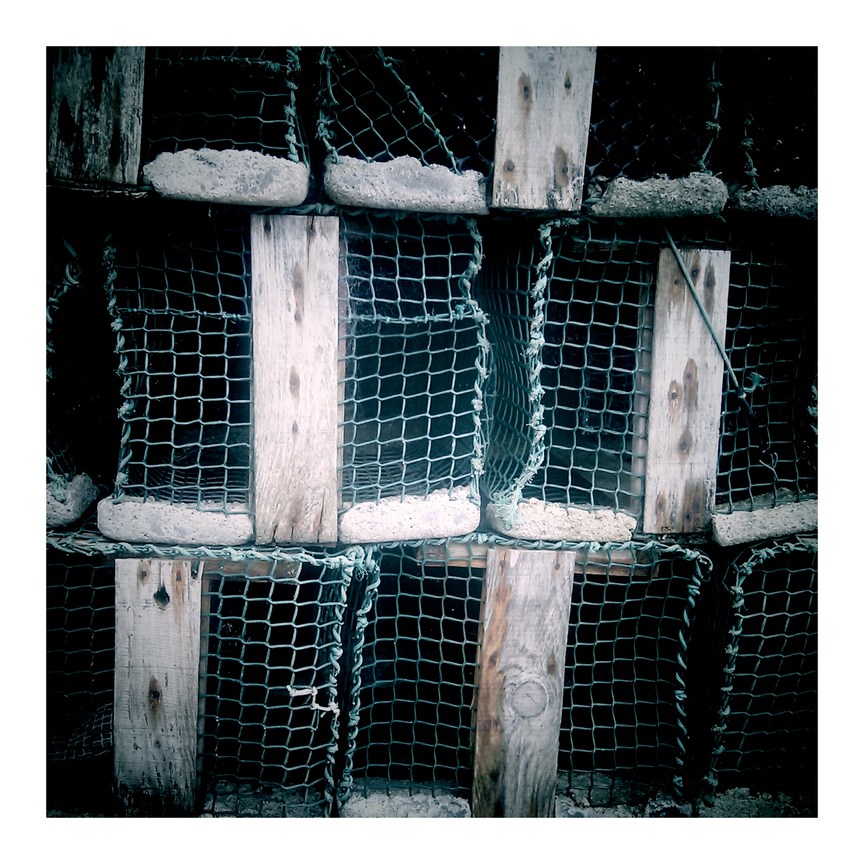 Lobster trap by gallas