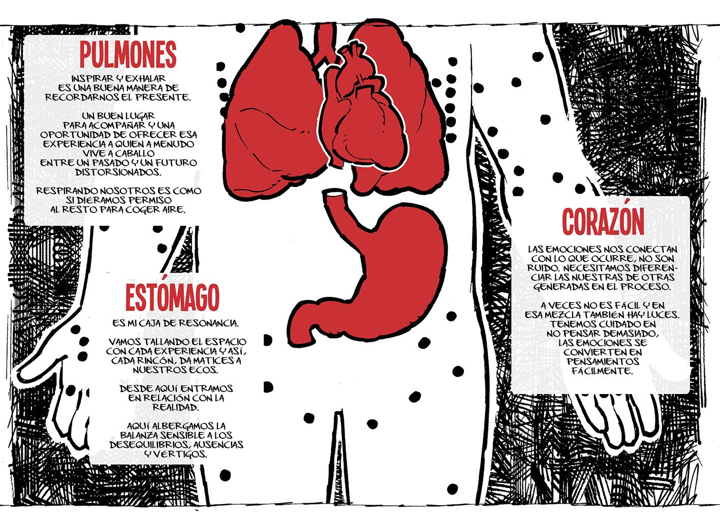 desAnudando #korapilatzen #05 Anatomía de un profesional de la ...