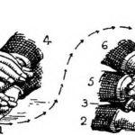 Definición de Propósito evolutivo: algunos aprendizajes en el camino